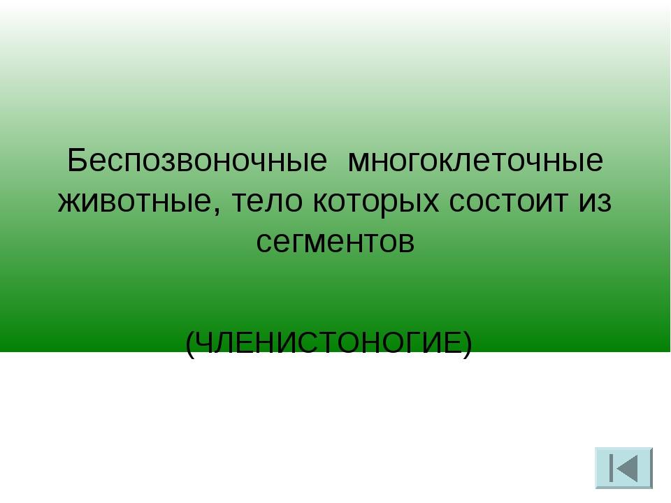 Беспозвоночные многоклеточные животные, тело которых состоит из сегментов (Ч...