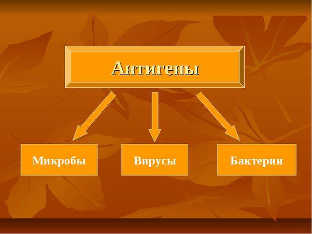 Антигены