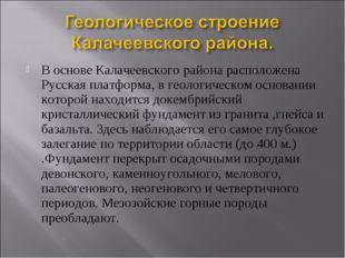 В основе Калачеевского района расположена Русская платформа, в геологическом