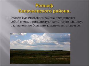 Рельеф Калачеевского района представляет собой слегка приподнятую холмистую р