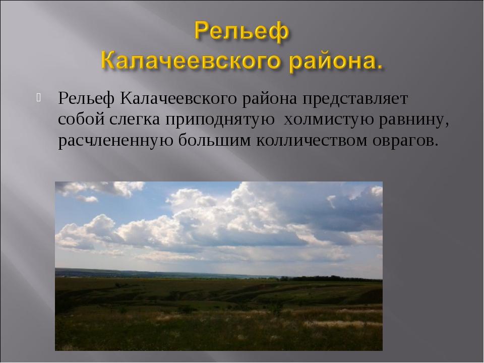 Рельеф Калачеевского района представляет собой слегка приподнятую холмистую р...