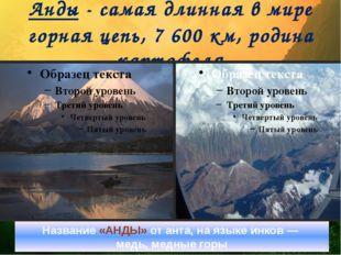 Анды - самая длинная в мире горная цепь, 7 600 км, родина картофеля Название