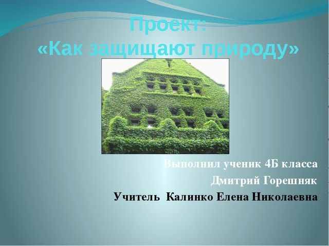 Проект: «Как защищают природу» Выполнил ученик 4Б класса Дмитрий Горешняк Учи...