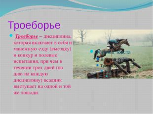 Троеборье Троеборье– дисциплина, которая включает в себя и манежную езду (вы