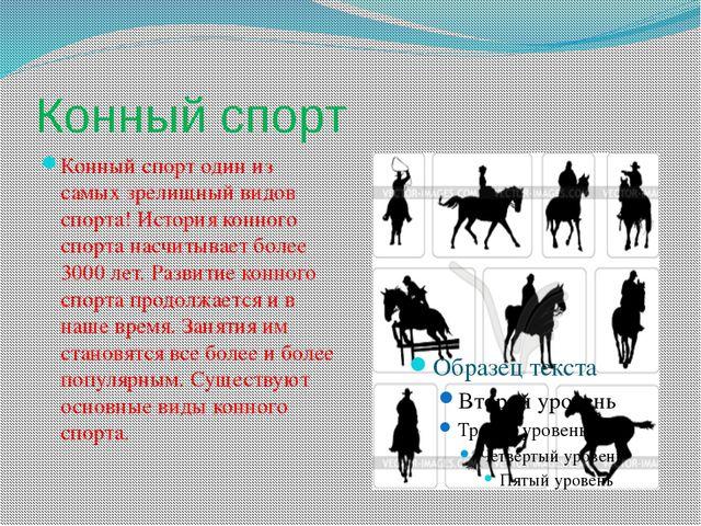 Конный спорт Конный спорт один из самых зрелищный видов спорта! История конно...