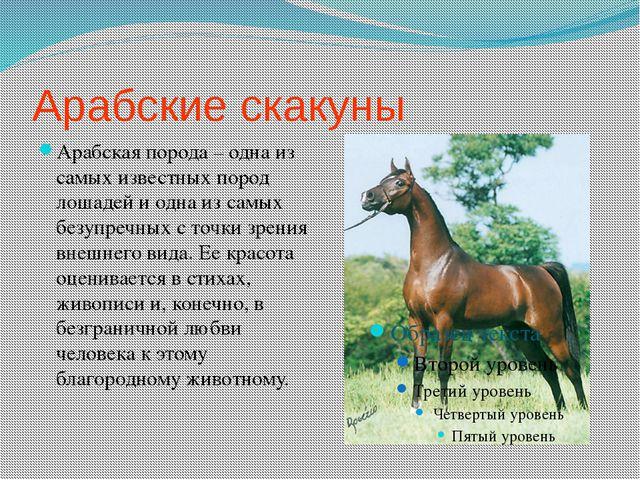 Арабские скакуны Арабская порода – одна из самых известных пород лошадей и од...