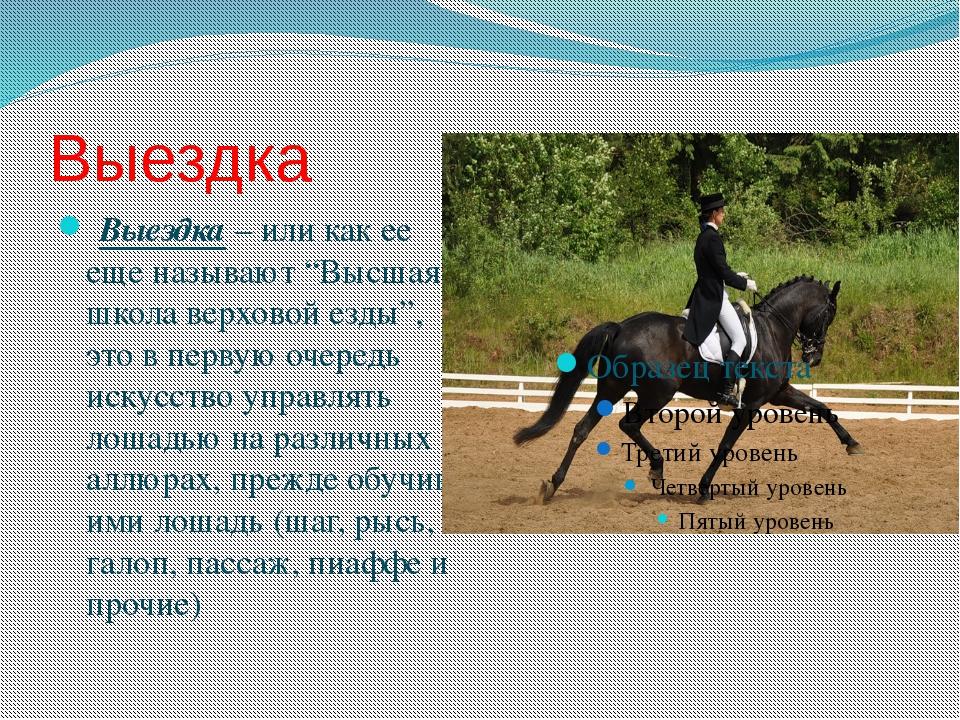 реферат на тему конный спорт с фото