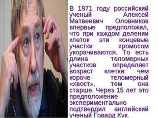 В 1971 году российский ученый Алексей Матвеевич Оловников впервые предположил