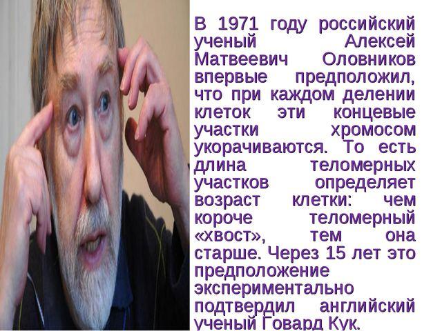 В 1971 году российский ученый Алексей Матвеевич Оловников впервые предположил...