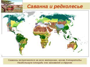 Саванна и редколесье Саванны встречаются на всех материках, кроме Антарктиды.