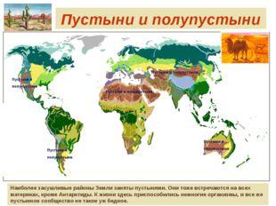 Пустыни и полупустыни Наиболее засушливые районы Земли заняты пустынями. Они
