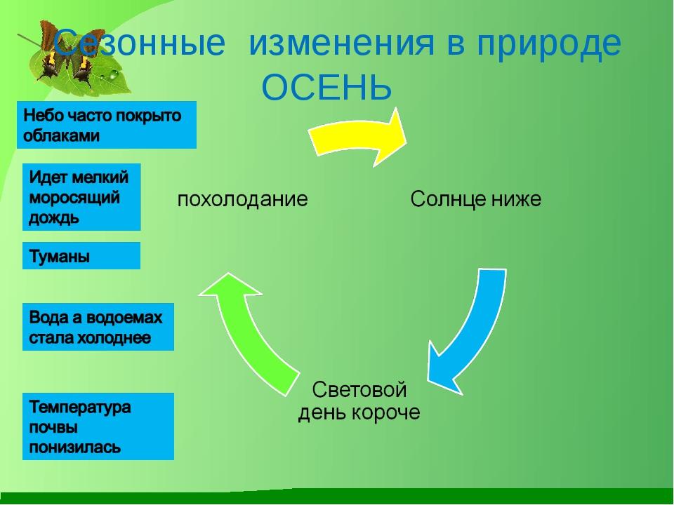 http://fs00.infourok.ru/images/doc/223/19732/1/img15.jpg