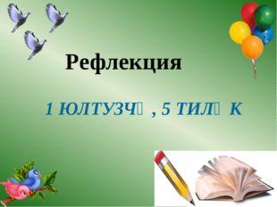 Рефлекция 1 ЮЛТУЗЧӘ, 5 ТИЛӘК