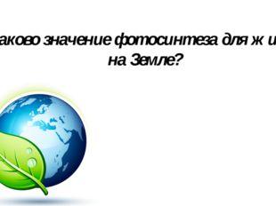 Каково значение фотосинтеза для жизни на Земле?