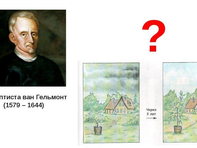 Ян Баптиста ван Гельмонт (1579 – 1644) ?