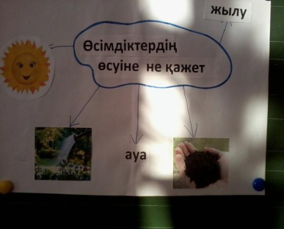 C:\Users\User\Desktop\Новая папка (3)\Фото-0020.jpg