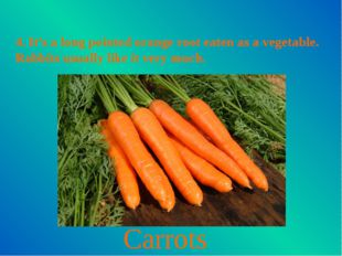 4. It's a long pointed orange root eaten as a vegetable. Rabbits usually like
