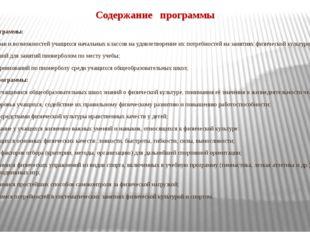 Содержание программы Цели программы: обеспечение прав и возможностей учащихся