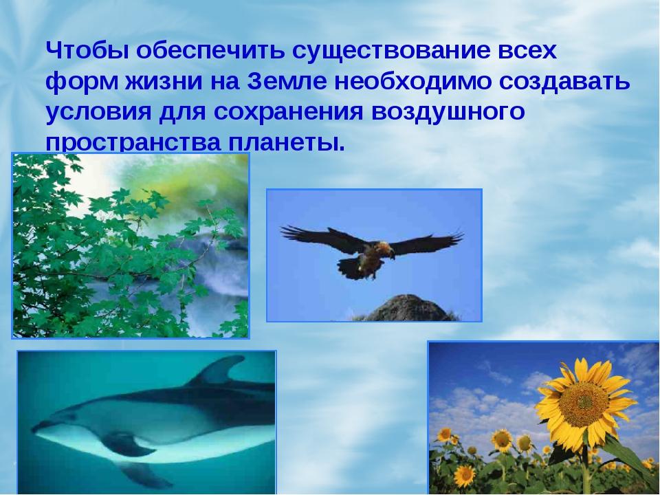 Чтобы обеспечить существование всех форм жизни на Земле необходимо создавать...