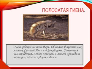 ПОЛОСАТАЯ ГИЕНА. Очень редкий ночной зверь. Обитает в пустынных местах Средн