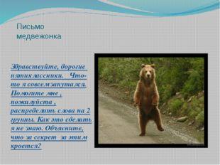 Письмо медвежонка Здравствуйте, дорогие пятиклассники. Что-то я совсем запута