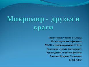 Подготовил: ученик 6 класса Малолавровского филиала МБОУ «Новопокровская СОШ»