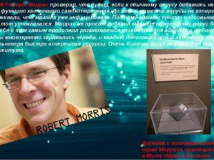 2 ноября 1988Роберт Морриспроверил, что будет, если к обычному вирусу добав
