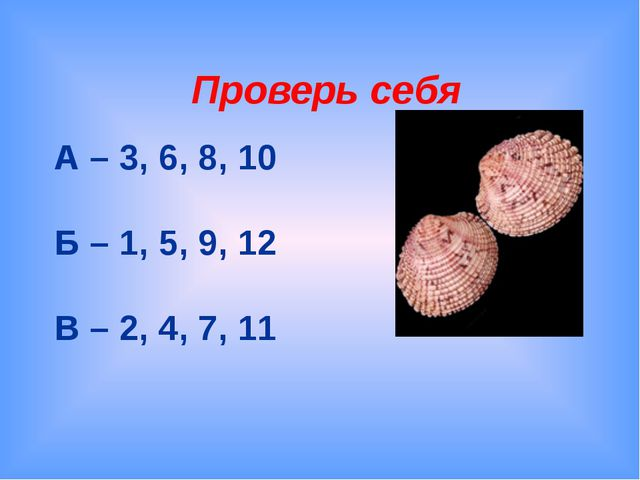 Проверь себя А – 3, 6, 8, 10 Б – 1, 5, 9, 12 В – 2, 4, 7, 11