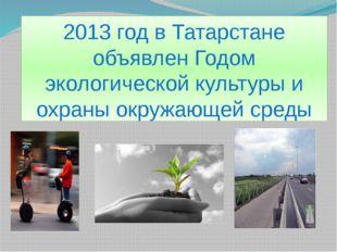 2013 год в Татарстане объявлен Годом экологической культуры и охраны окружающ