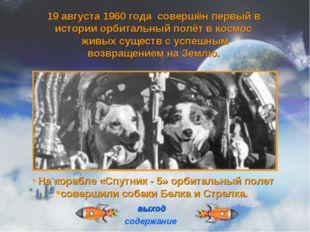 На корабле «Спутник - 5» орбитальный полет совершили собаки Белка и Стрелка.