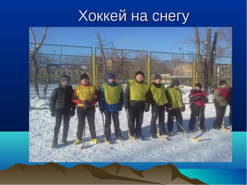 Хоккей на снегу