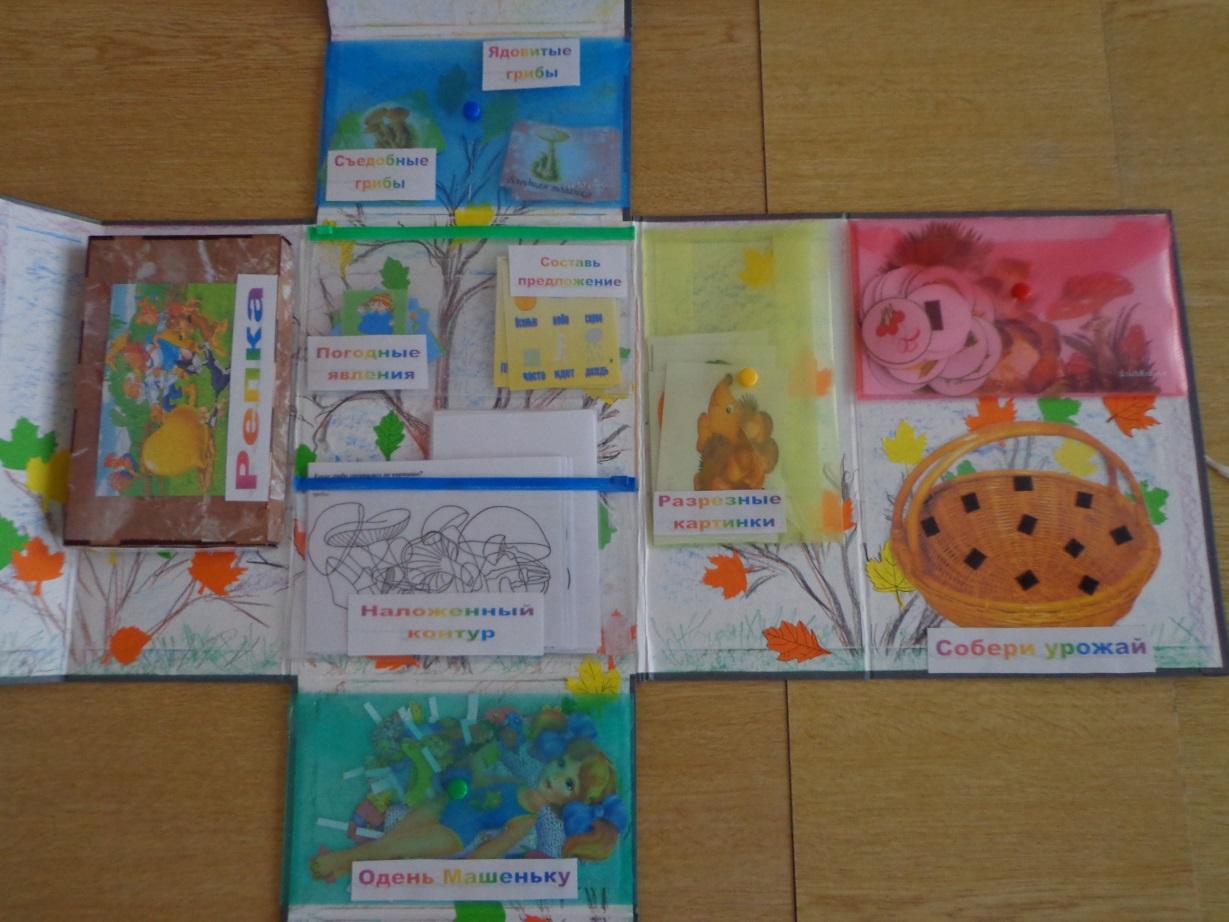 Лэпбук по экологии в детском саду
