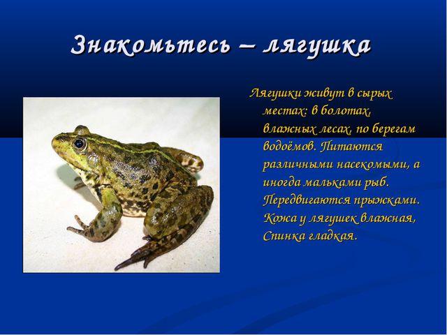 Знакомьтесь – лягушка Лягушки живут в сырых местах: в болотах, влажных лесах,...