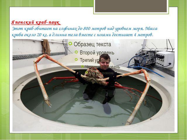 Японский краб-паук Этот краб обитает на глубинах до 800 метров над уровнем мо...