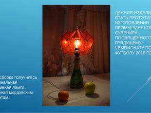 В итоге сборки получилась функциональная декоративная лампа, украшенная мордо