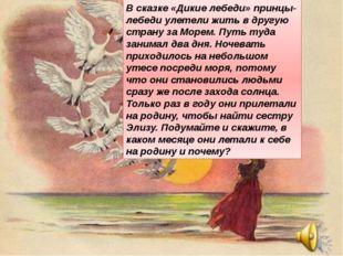 В сказке «Дикие лебеди» принцы-лебеди улетели жить в другую страну за Mopeм.