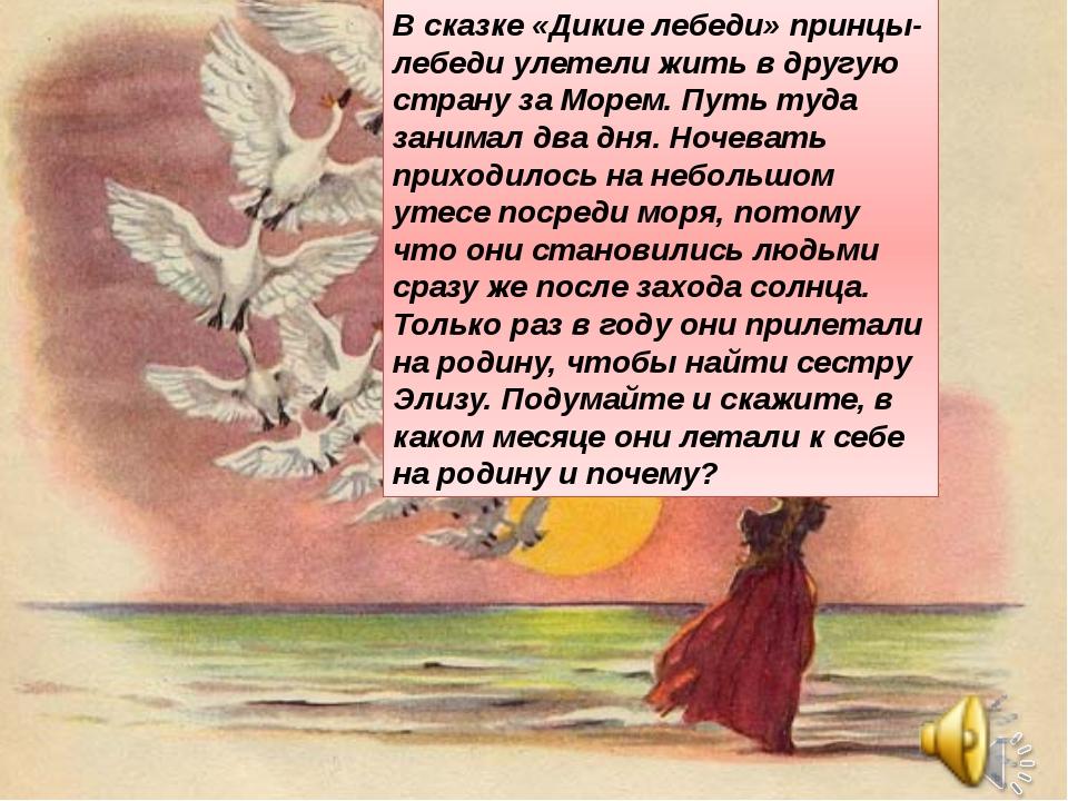 В сказке «Дикие лебеди» принцы-лебеди улетели жить в другую страну за Mopeм....