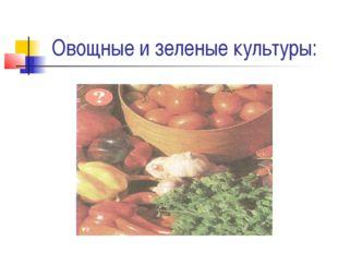 Овощные и зеленые культуры: