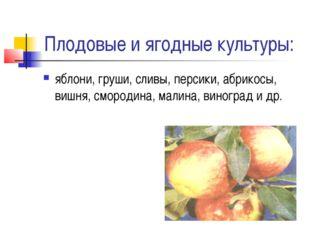 Плодовые и ягодные культуры: яблони, груши, сливы, персики, абрикосы, вишня,