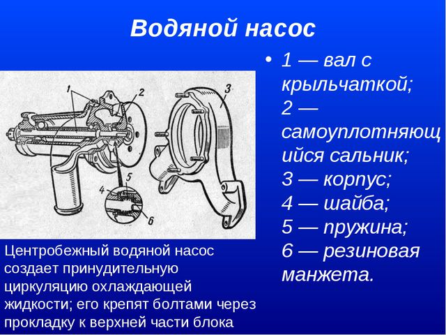 Водяной насос 1 — вал с крыльчаткой; 2 — самоуплотняющийся сальник; 3 — кор...