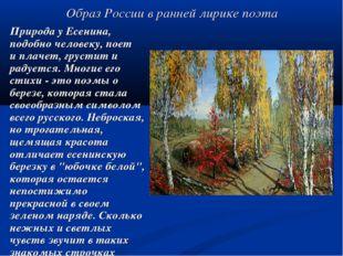 Образ России в ранней лирике поэта Природа у Есенина, подобно человеку, поет