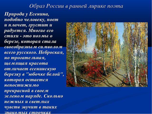 Образ России в ранней лирике поэта Природа у Есенина, подобно человеку, поет...