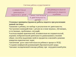 Система работы осуществляется СОВМЕСТНАЯ деятельность педагогов и детей ИНДИ