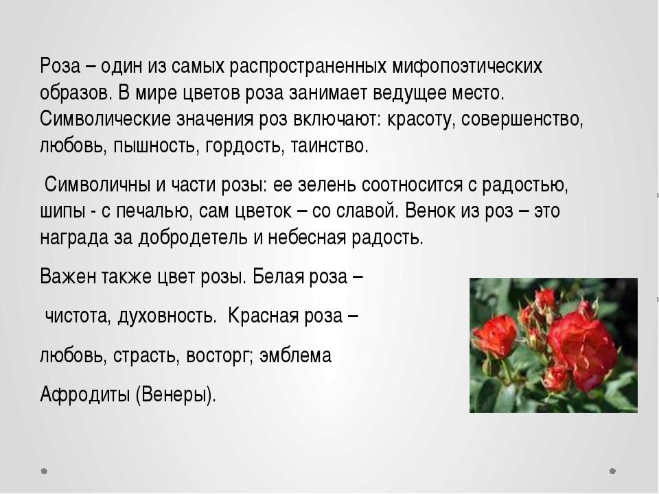 Роза – один из самых распространенных мифопоэтических образов. В мире цветов...