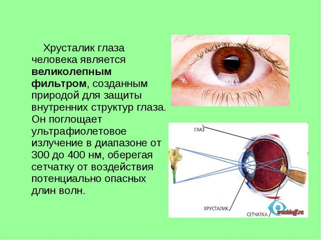 Хрусталик глаза человека является великолепным фильтром, созданным природой...