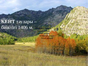 КЕНТ таулары – биіктігі 1406 м.