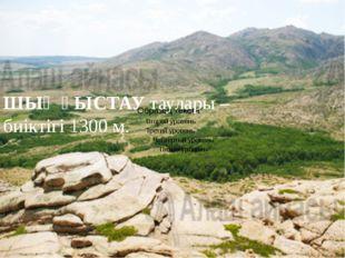 ШЫҢҒЫСТАУ таулары – биіктігі 1300 м.