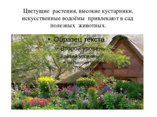 Цветущие растения, высокие кустарники, искусственные водоёмы привлекают в сад