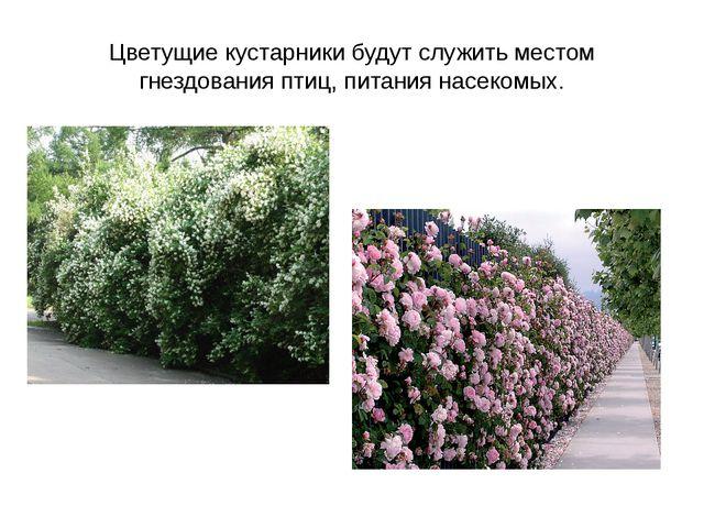 Цветущие кустарники будут служить местом гнездования птиц, питания насекомых.
