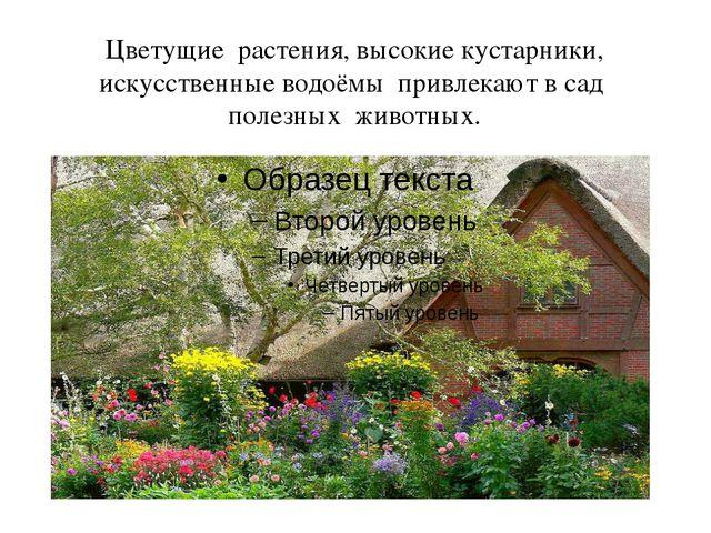 Цветущие растения, высокие кустарники, искусственные водоёмы привлекают в сад...